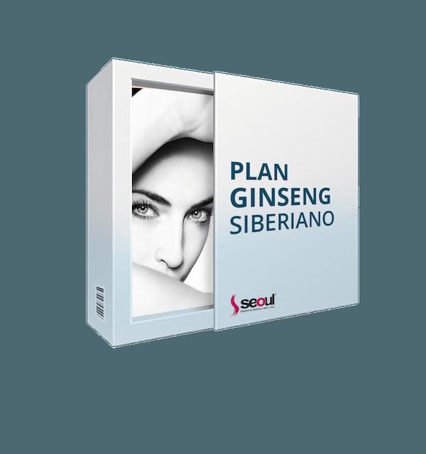 plan-ginseg-siberiano